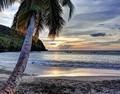 La Martinique : ses coutumes et ses sites d'exception